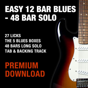 Easy 12 Bar Blues - 48 Bar Solo - Download (1.4 GB)